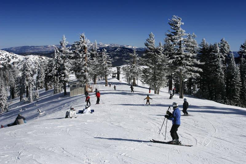 繁忙的手段滑雪滑雪者 免版税库存照片