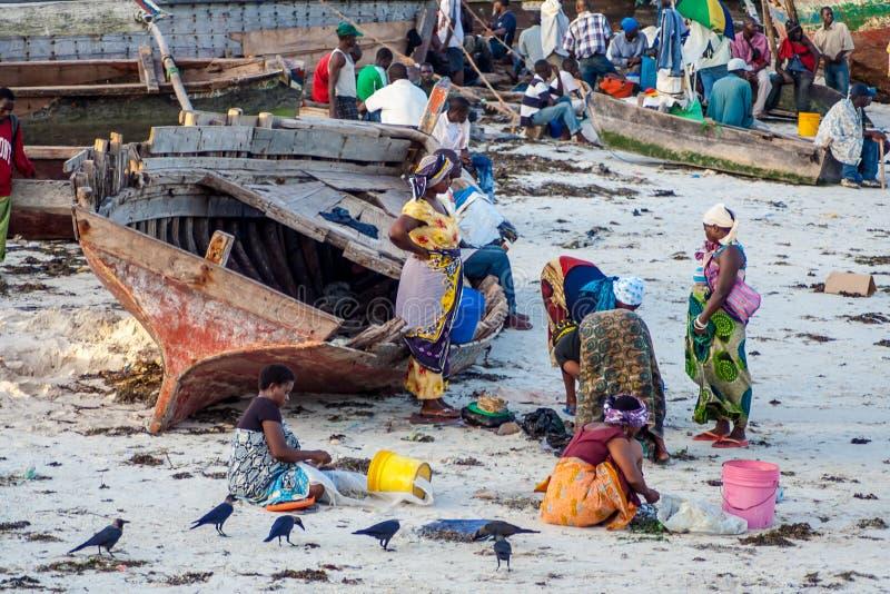 繁忙的海滩,当渔船返回 库存照片