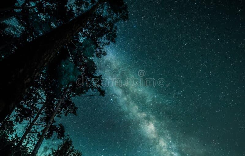 繁星之夜天空神圣看法与银河的 库存照片