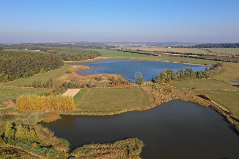 繁殖的池塘风景 免版税库存图片