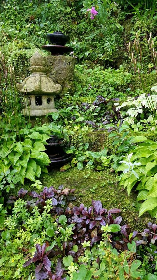 繁茂花园小山 库存图片