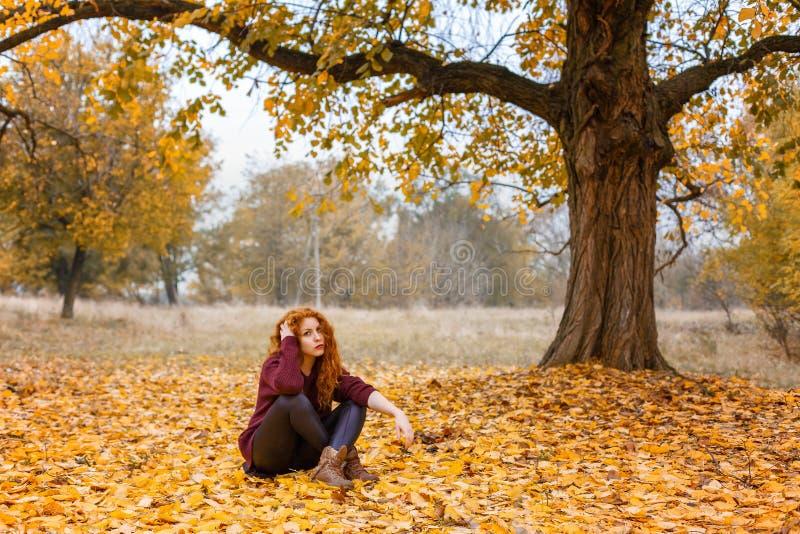 红发女孩在秋天森林里坐黄色叶子 库存图片