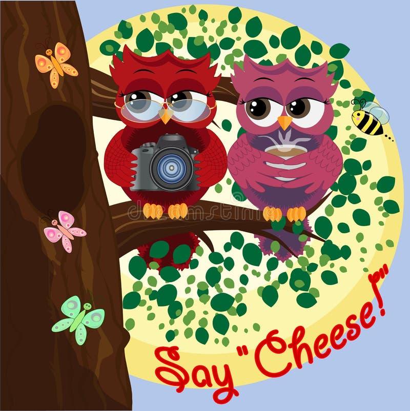 红发猫头鹰戴着眼镜和拿着照相机坐与一头朋友猫头鹰的一棵树用咖啡 照片事务,摄影师, 皇族释放例证