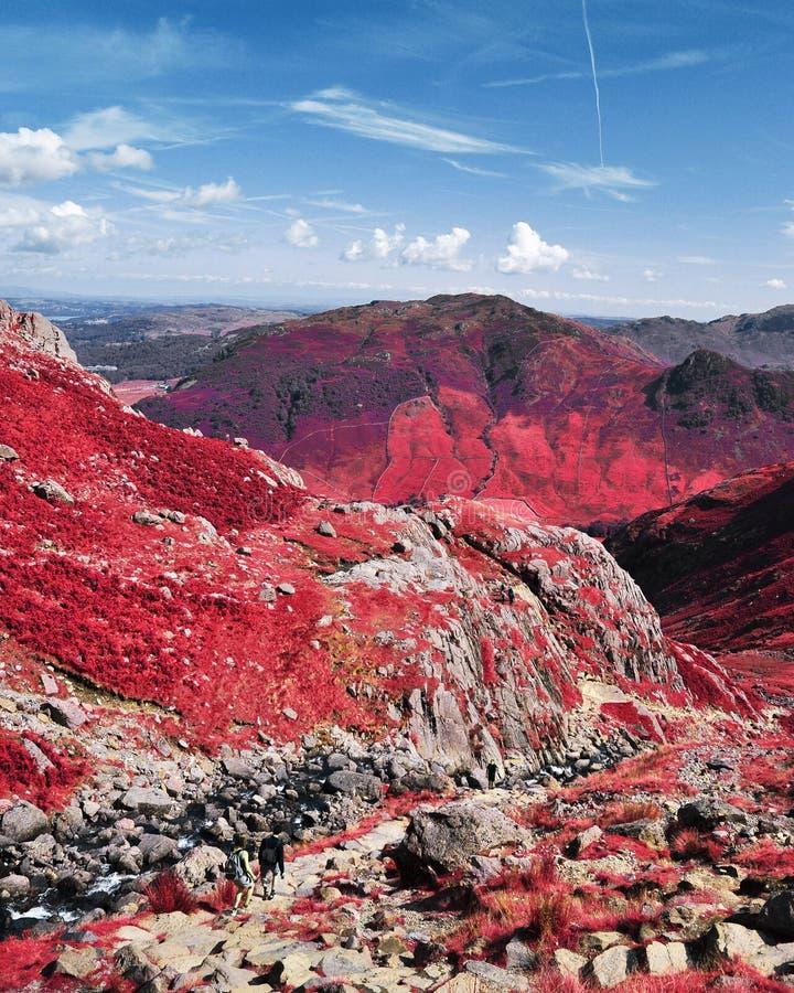 红外山在湖区 免版税库存图片