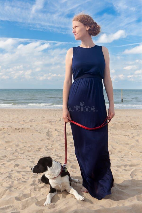 红头发人妇女狗海滩,德帕内,比利时 免版税库存图片