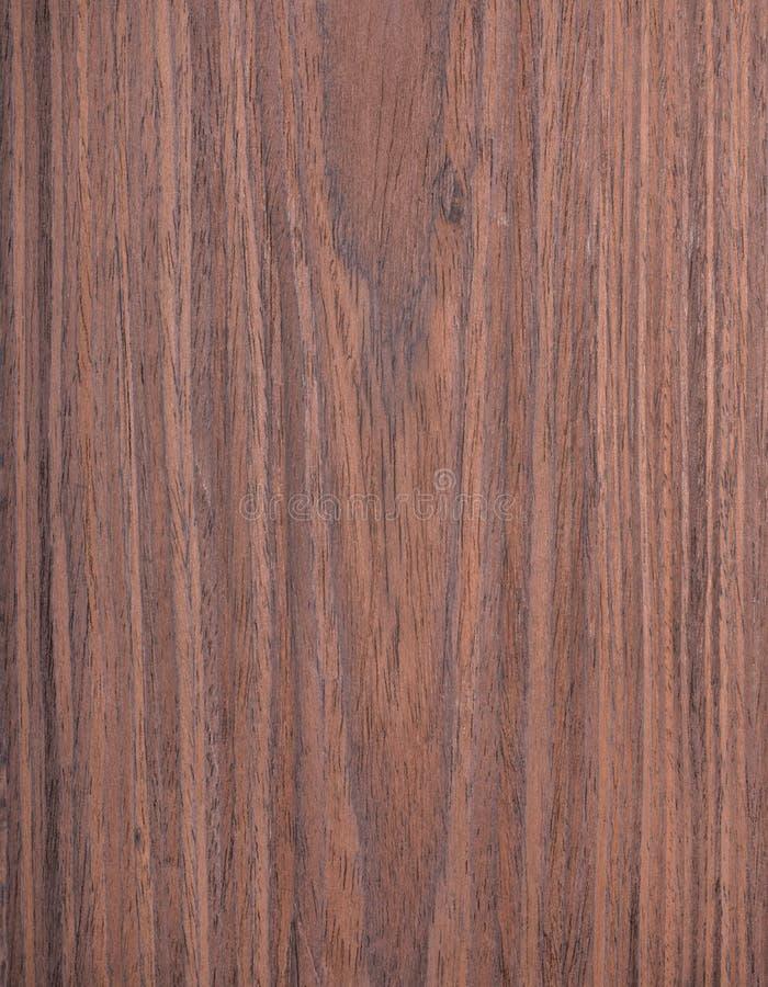 红木木纹理,木五谷,自然树背景 免版税库存图片