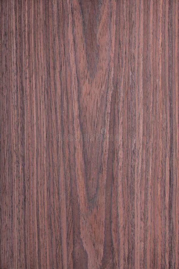 红木木纹理,自然树背景 图库摄影