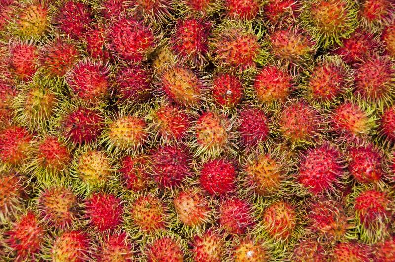 红毛丹。 免版税库存图片