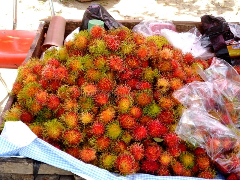 红毛丹,荔枝, lychee 库存图片