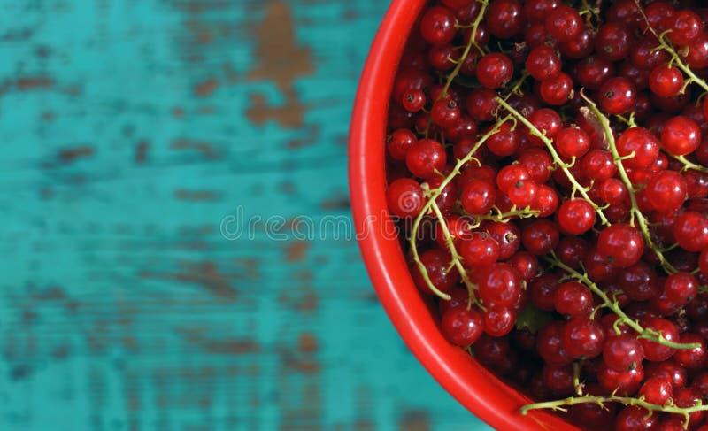 红浆果在蓝色的莓果盘子顶视图绘了土气背景 库存照片