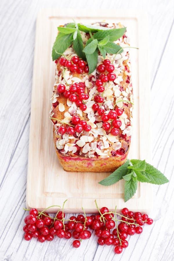 红浆果饼 库存图片