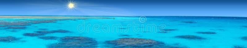 红海的透明的珊瑚水 免版税库存照片