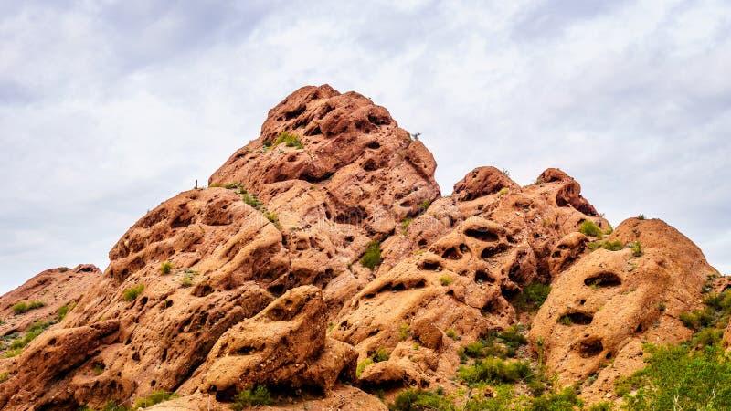 红砂岩小山的侵蚀在Papago公园创造了有趣的岩层 免版税图库摄影