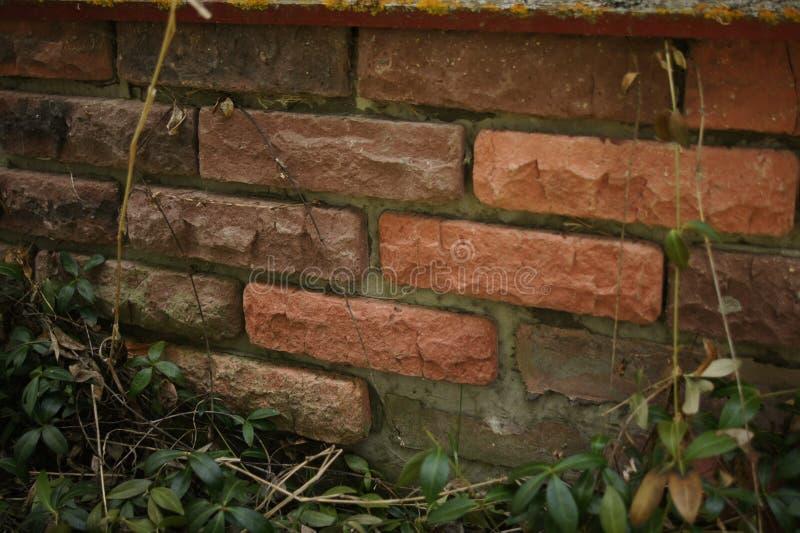?? 红砖纹理 赤土陶器橙色砖 背景,背景 免版税库存照片