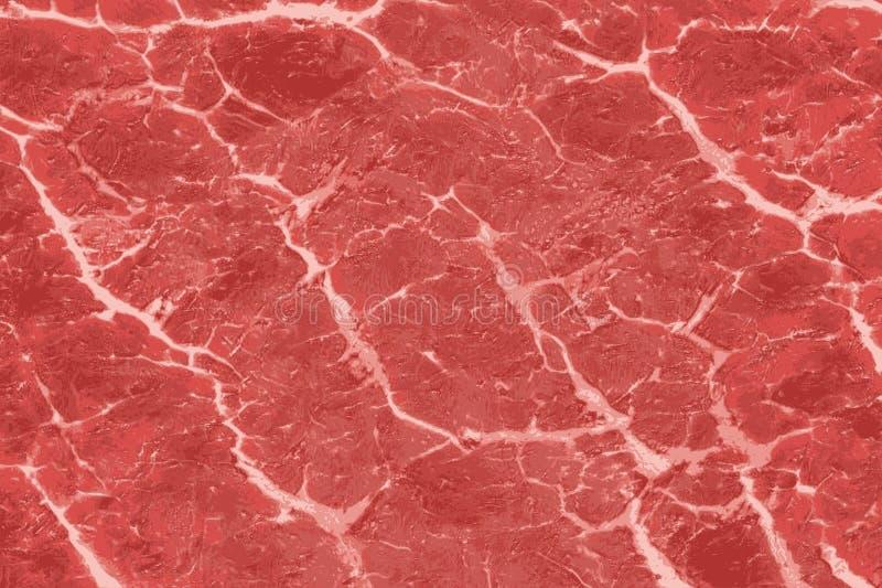 红肉纹理与白色静脉样式的 免版税库存照片