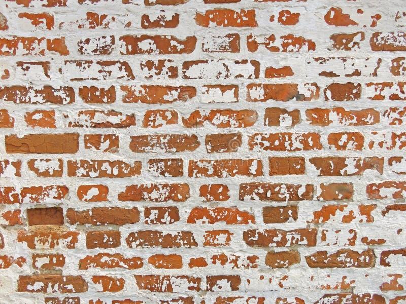 红色、赤土陶器和白色砖背景 红色Bric老墙壁  库存图片