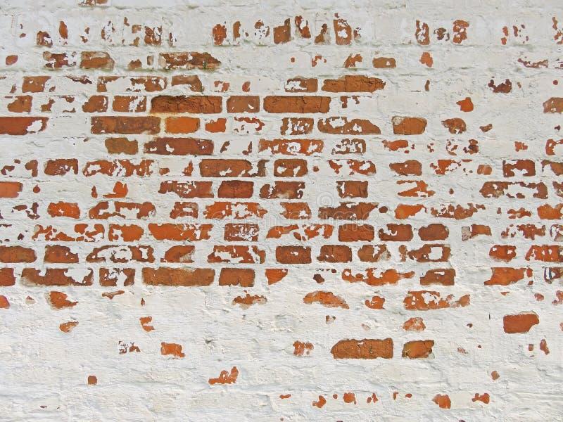 红色、赤土陶器和白色砖背景 红色Bric老墙壁  库存照片