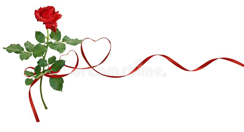 红色丝绸丝带心脏和玫瑰色花为华伦泰` s天 免版税库存图片