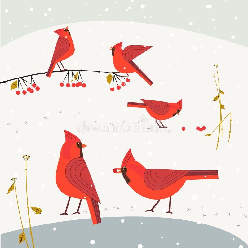 红色主要鸟集合 库存例证