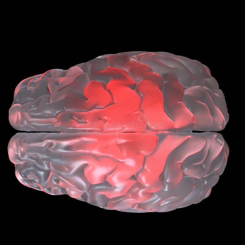 红色发光的玻璃脑子 库存例证