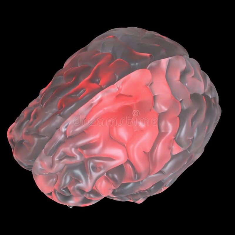 红色发光的玻璃脑子 向量例证