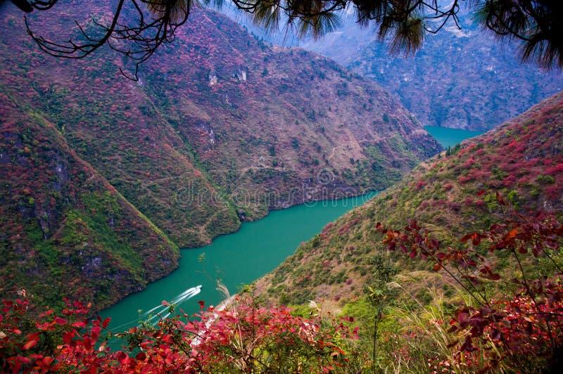 红色叶子在长江的三峡 免版税库存照片
