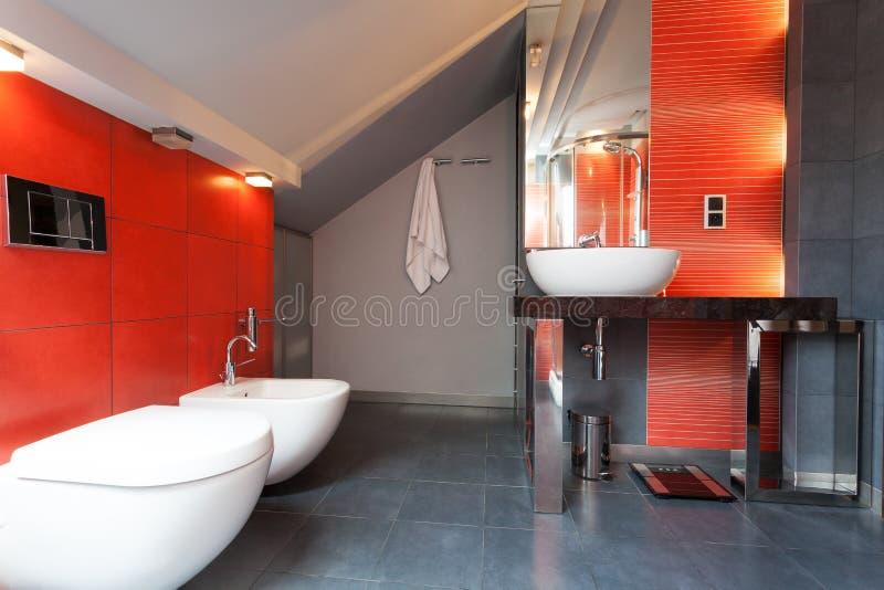 红色和灰色卫生间 库存照片