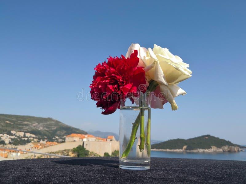 红色和白玫瑰前面看见和海岛 库存照片