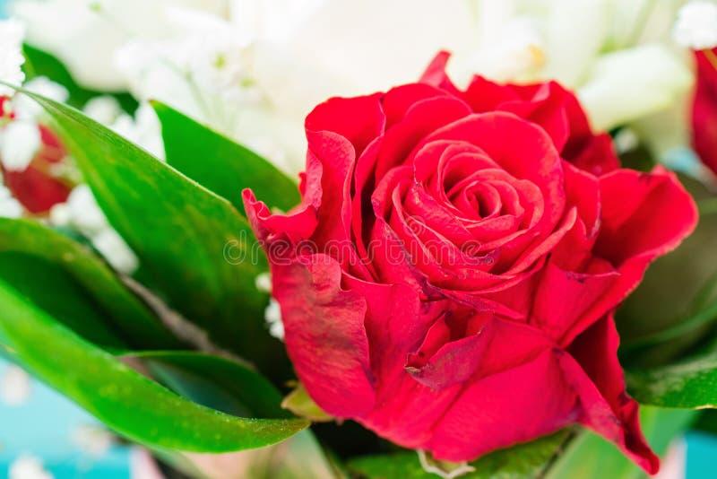 红色和白玫瑰花束在蓝色背景的与拷贝空间 免版税库存照片