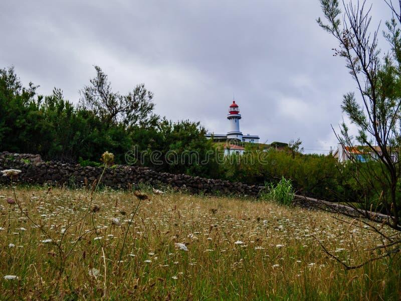 红色和白色灯塔的图象在白天 免版税库存照片