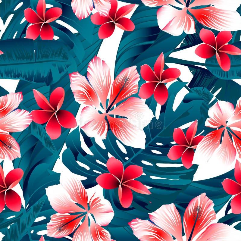 红色和白色热带木槿开花无缝的样式 向量例证
