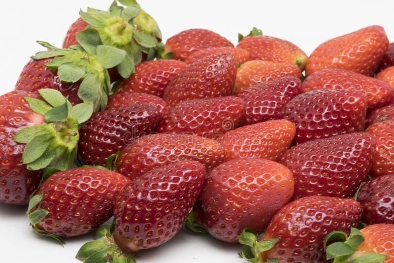 红色和芬芳草莓 免版税库存照片