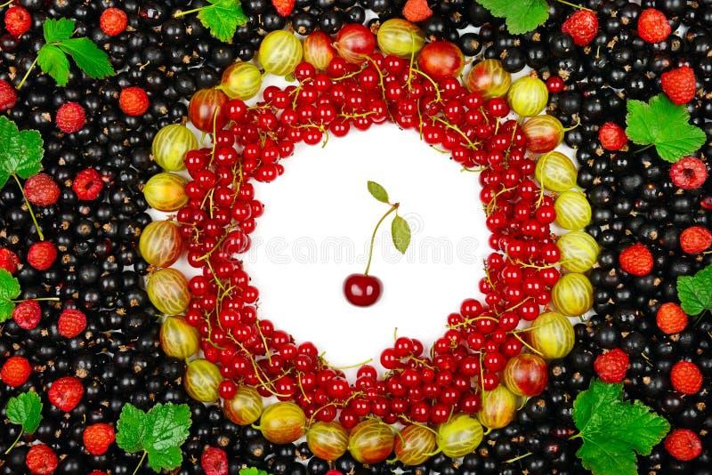 红色和黑醋栗,鹅莓背景  库存照片