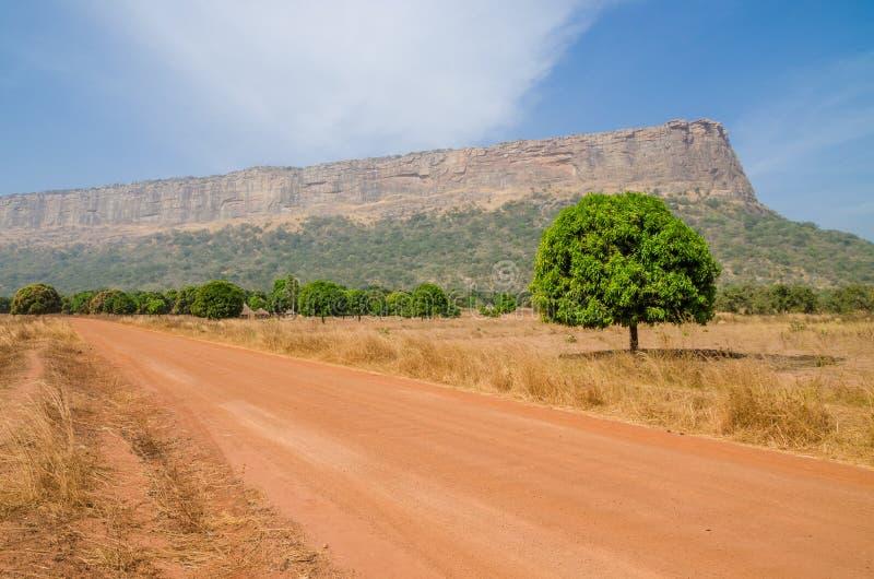 红色土和石渣路、唯一树和大平顶的山在Fouta Djalon地区,几内亚,西非 免版税图库摄影