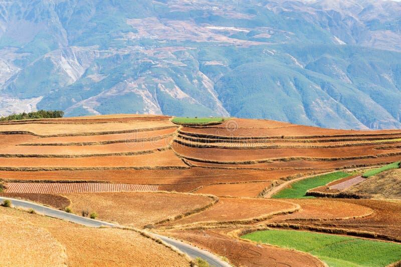 红色土地特写镜头在云南 免版税库存照片