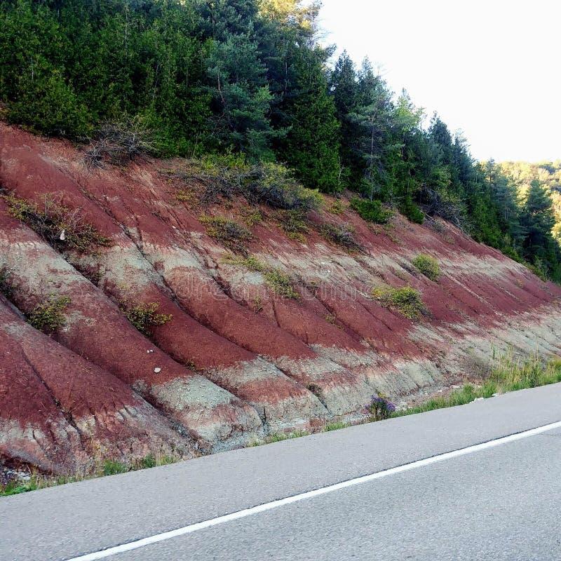 红色土壤 免版税库存图片