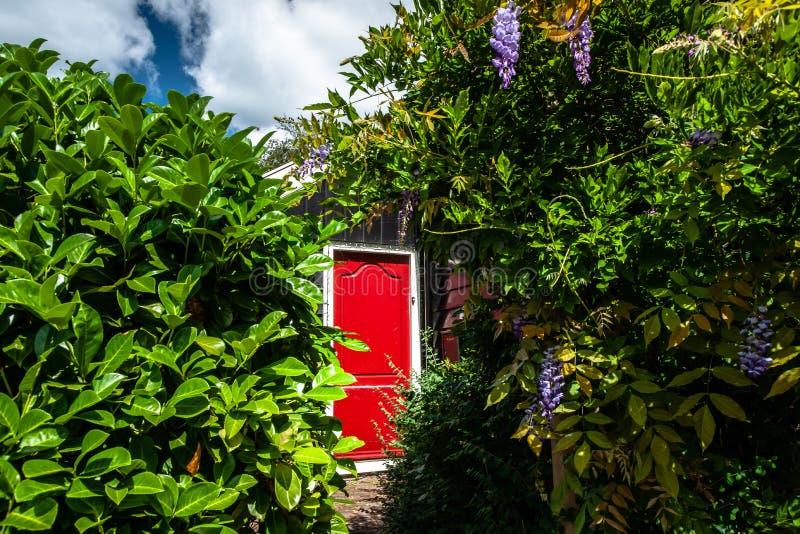 红色在一个老荷兰镇的一个绿色庭院里有tra的绘了门 库存照片