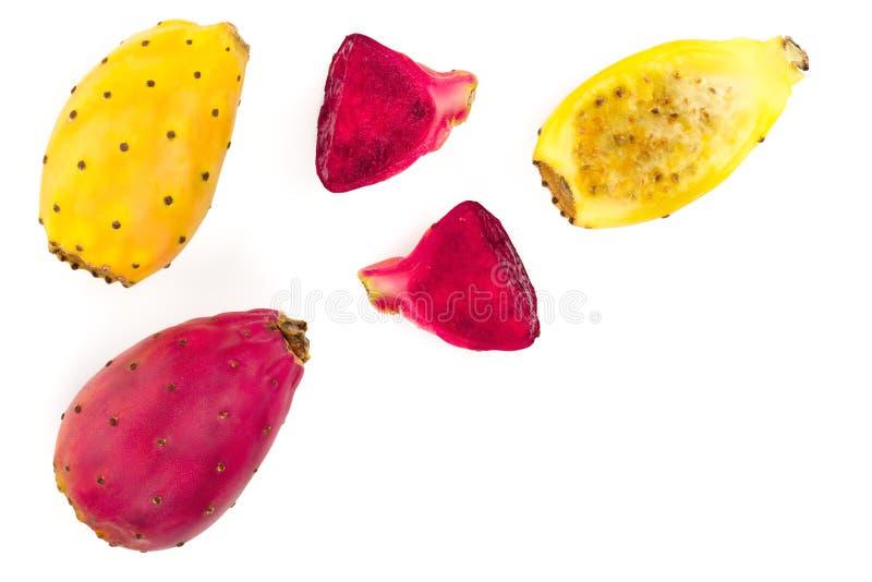 红色在与拷贝空间的白色背景或仙人掌隔绝的末端黄色仙人球您的文本的 顶视图 平的位置 免版税库存图片