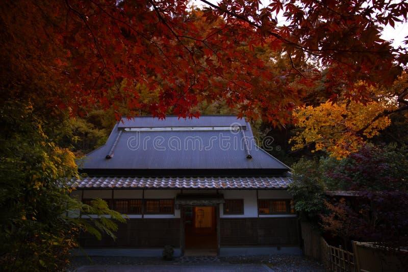 红色在秋天季节米诺瀑布大阪日本离开  免版税库存照片