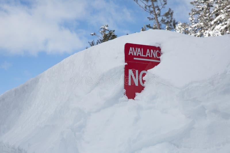 红色在雪埋没的雪崩警报信号 库存图片