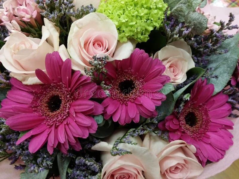 红色大丁草新鲜的花束 库存照片