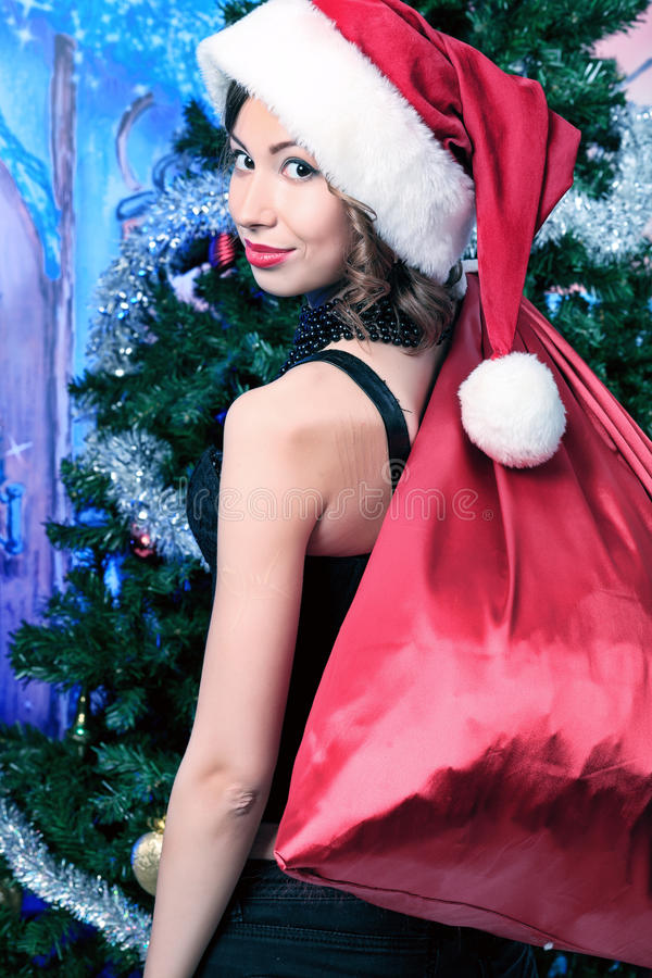 Download 红色大袋 库存图片. 图片 包括有 性感, 纵向, 庆祝, 礼品, 乐趣, 女性, 女孩, 快乐, 人们 - 22355841