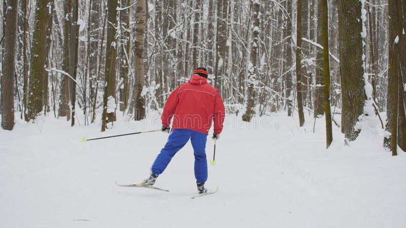 红色夹克的人滑雪者在冬天雪森林里滑 免版税库存图片