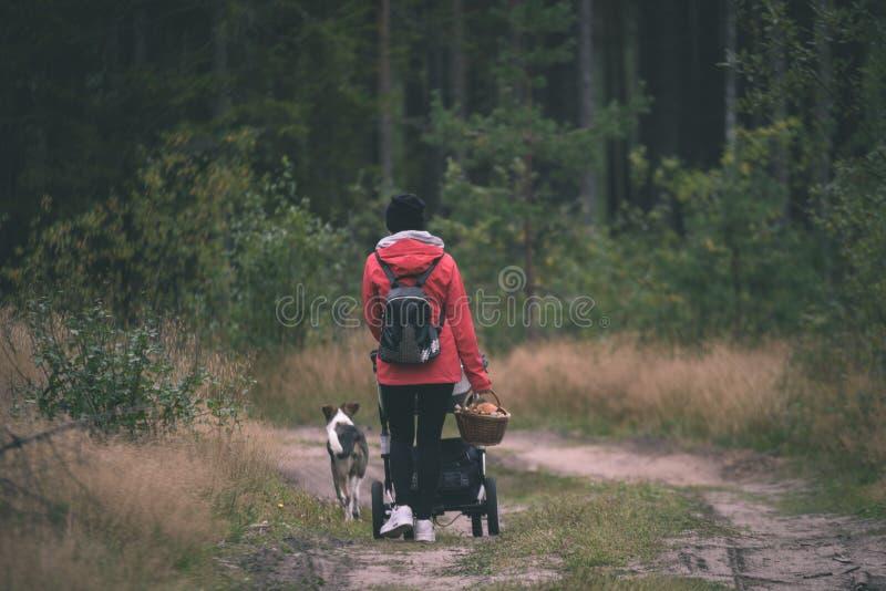 红色夹克的少妇享受自然的在森林拉脱维亚- vi里 免版税库存照片