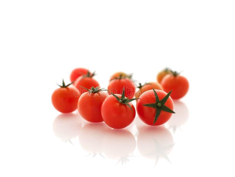 红色小的蕃茄 免版税库存照片