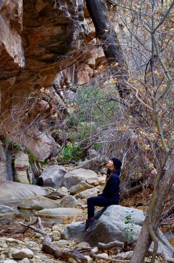 红色岩石保护地区,南内华达,美国 免版税库存照片