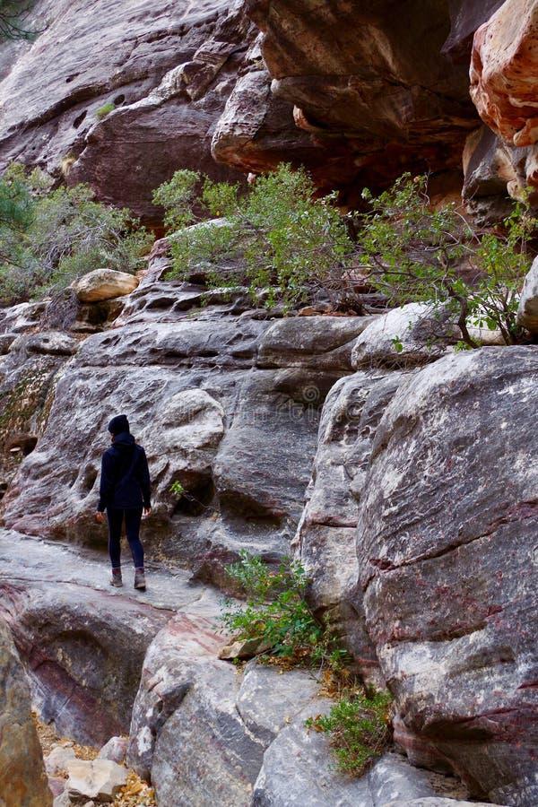 红色岩石保护地区,南内华达,美国 图库摄影