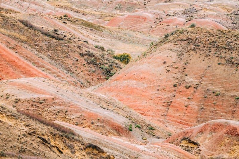 红色岩石在Gareja沙漠,卡赫季州地区,乔治亚 秋天横向 免版税库存图片
