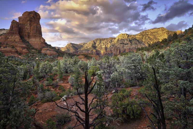 红色岩石, Sedona,亚利桑那 库存图片