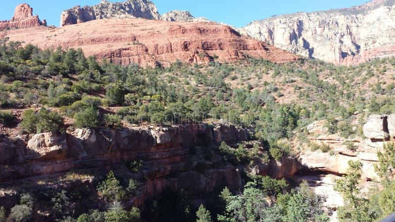 红色岩石sedona 库存图片